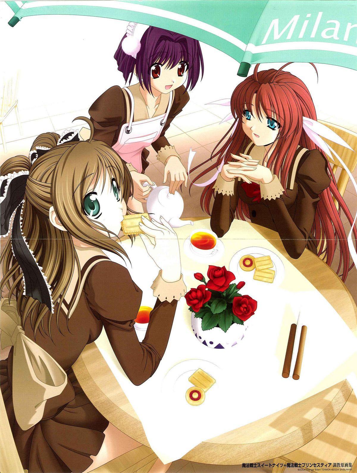 Mahou Senshi Sweet Knight & Mahou Senshi Princess Tear 0