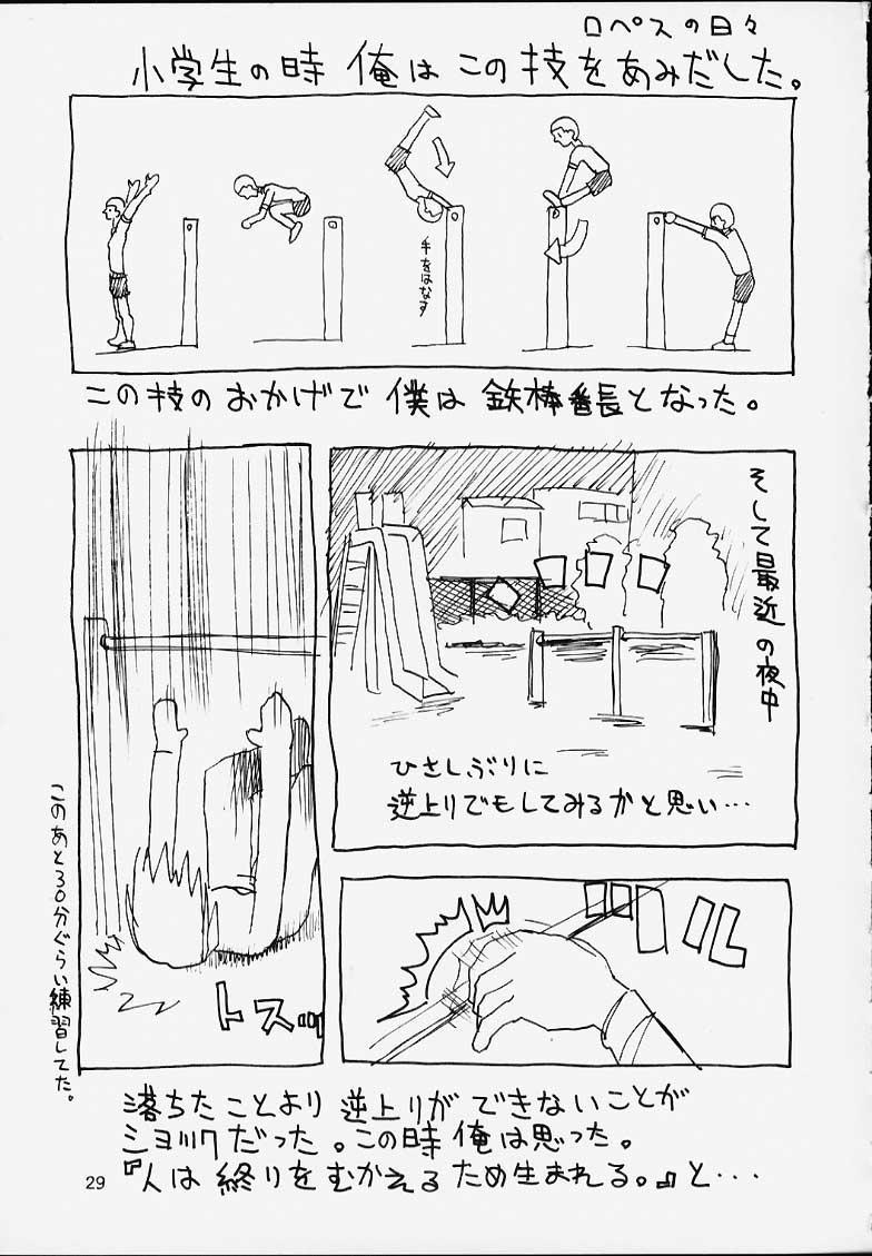 Shumi no Doujinshi 12 29