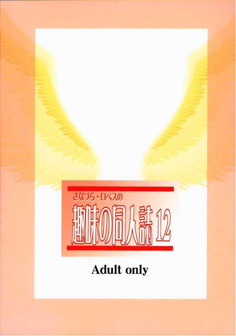 Shumi no Doujinshi 12 71