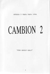 Cambion 2 4