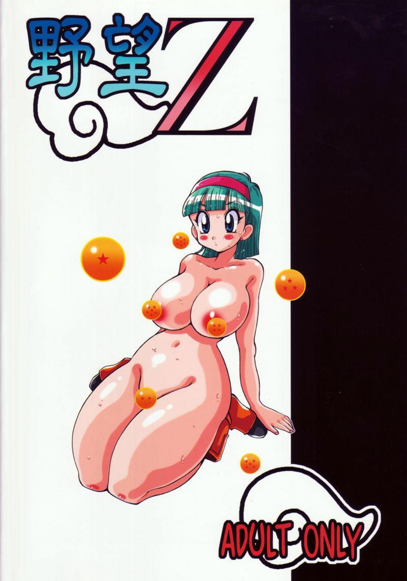 Yabou Z 27