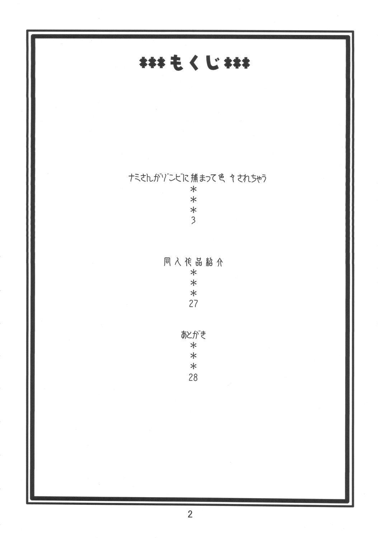Nami no Ura Koukai Nisshi 3 2