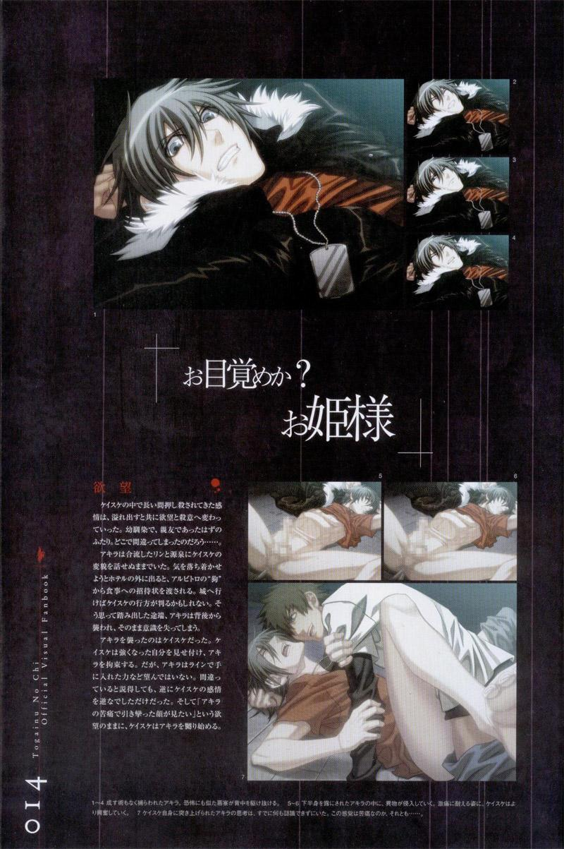 Togainu no chi -  Official Visual Fan Book 14