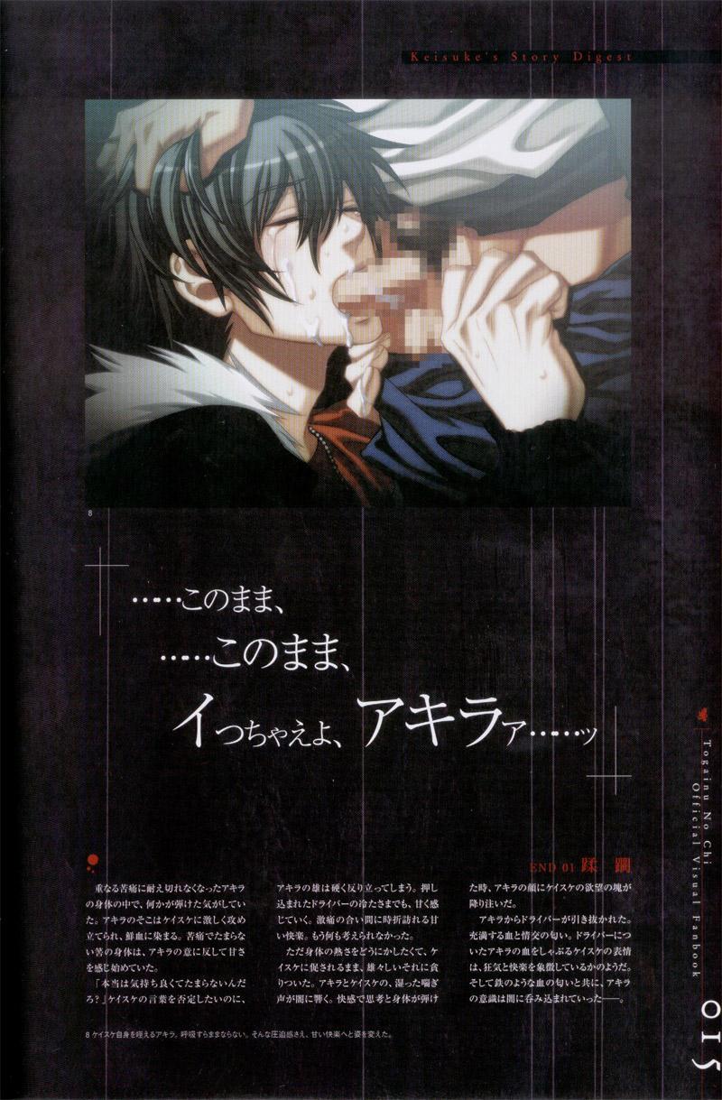 Togainu no chi -  Official Visual Fan Book 15
