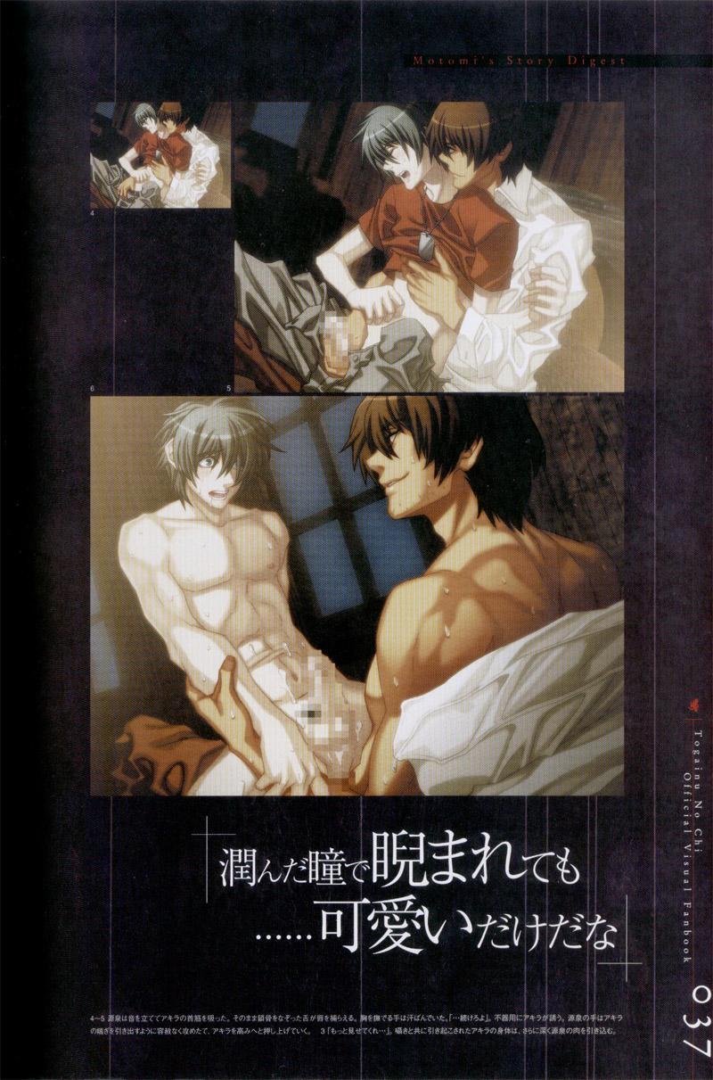 Togainu no chi -  Official Visual Fan Book 37