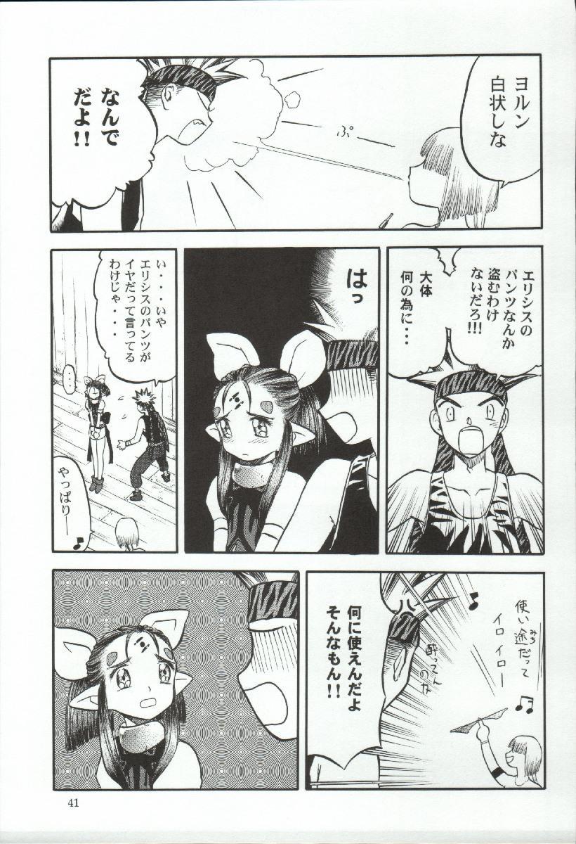 Elisiss ga Deteru Hon Kanzenban 40