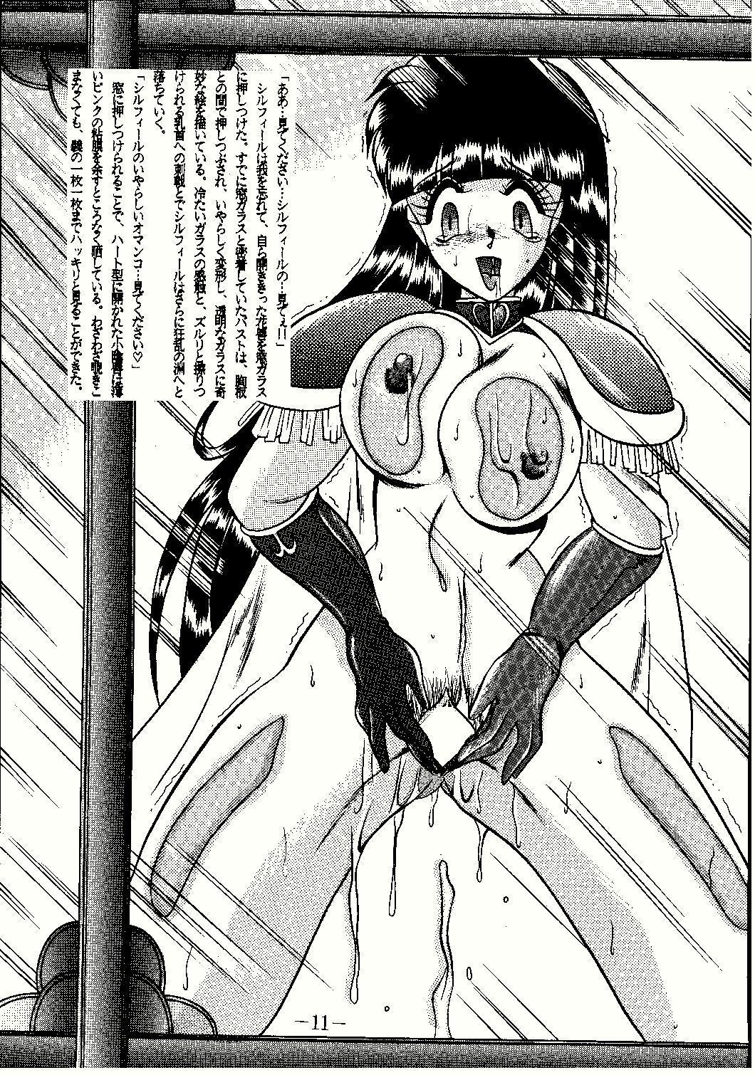 Shinseiki 10