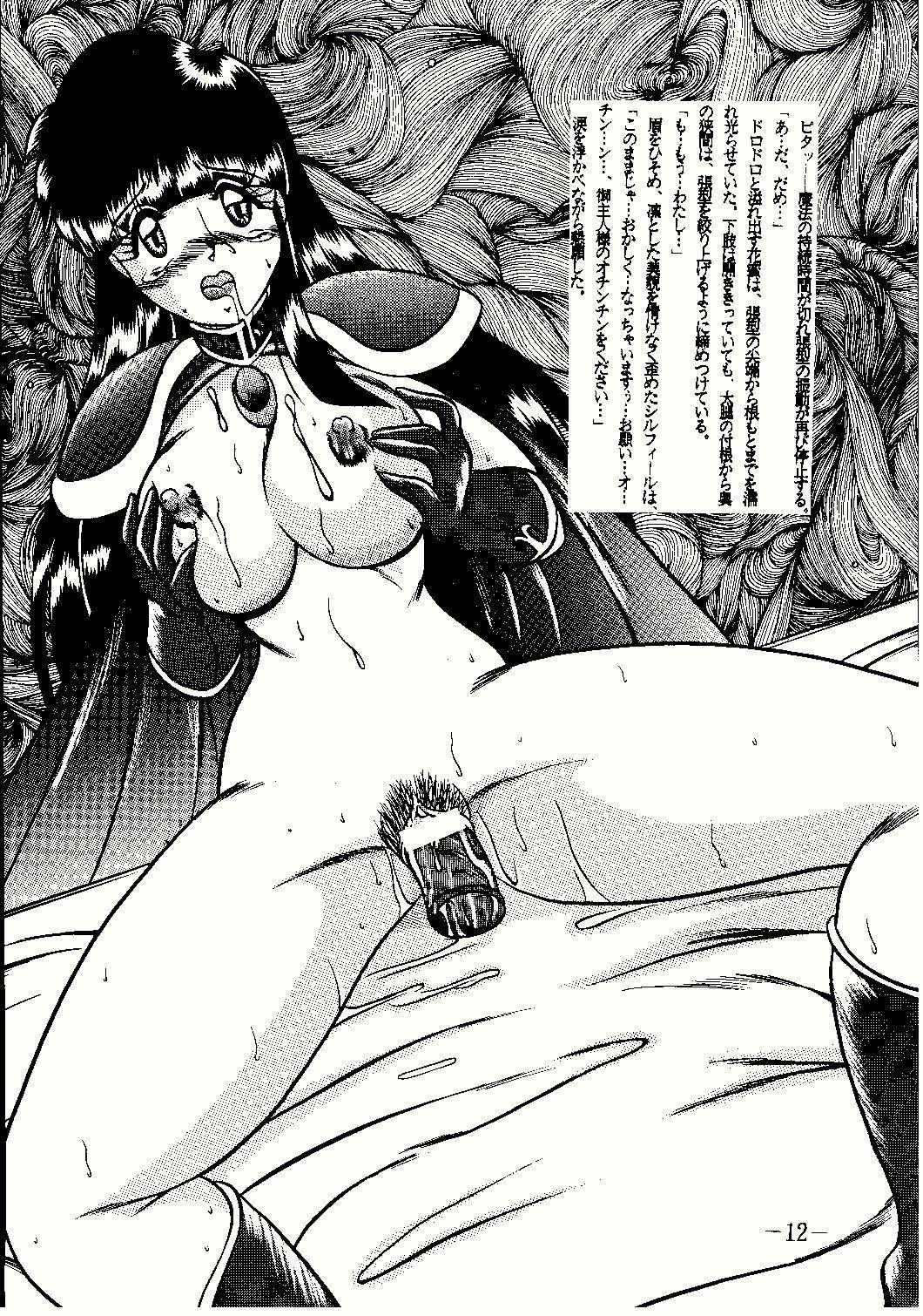 Shinseiki 11