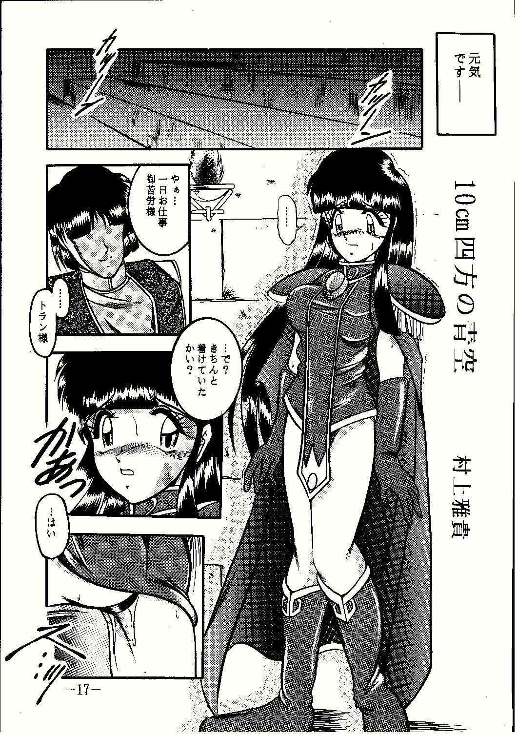 Shinseiki 16