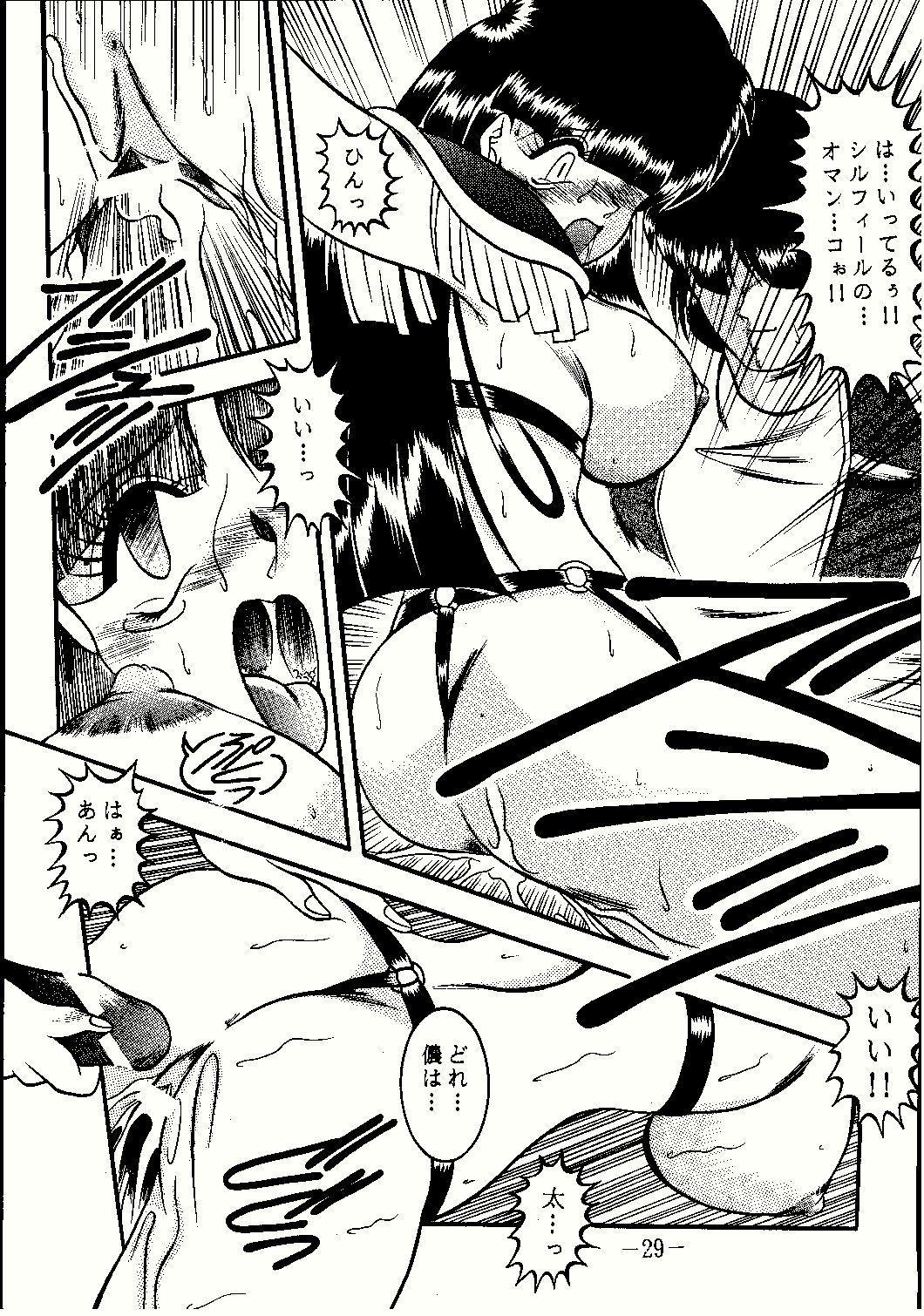 Shinseiki 28