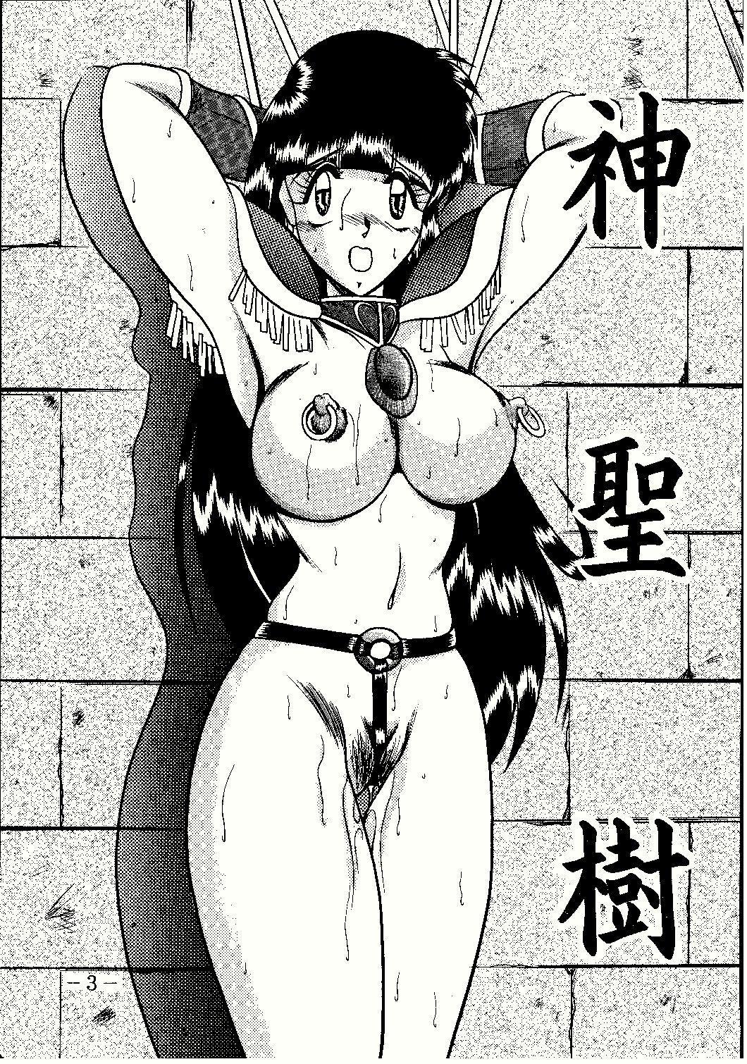Shinseiki 2