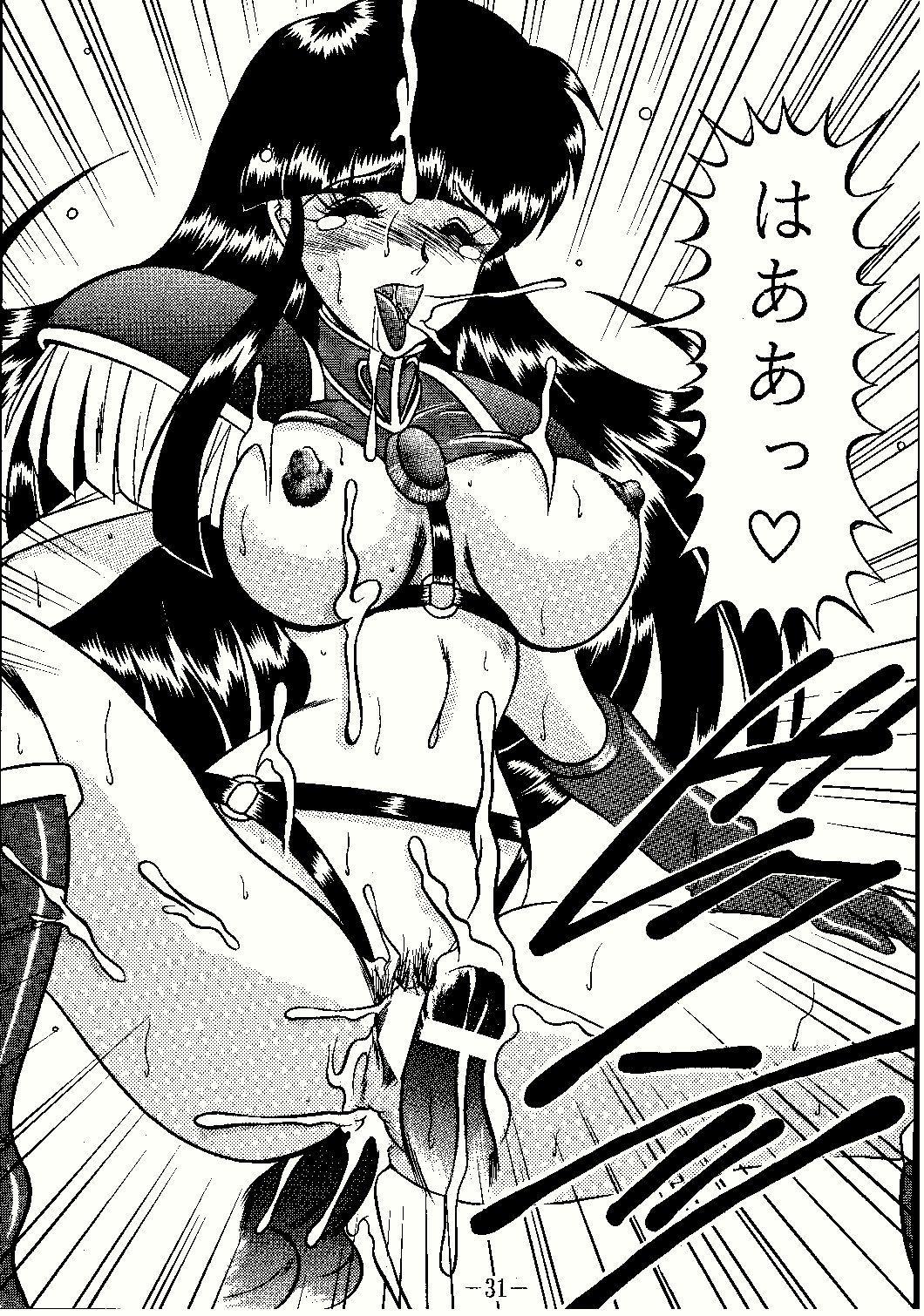 Shinseiki 30