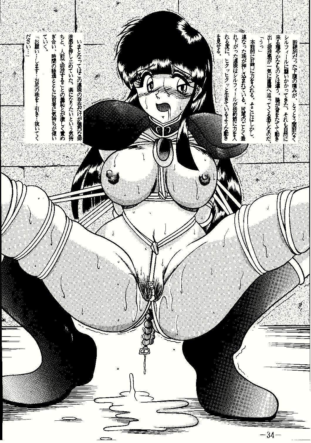 Shinseiki 33