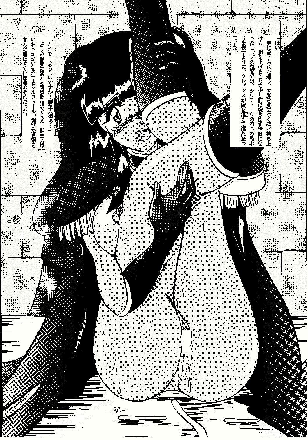 Shinseiki 35