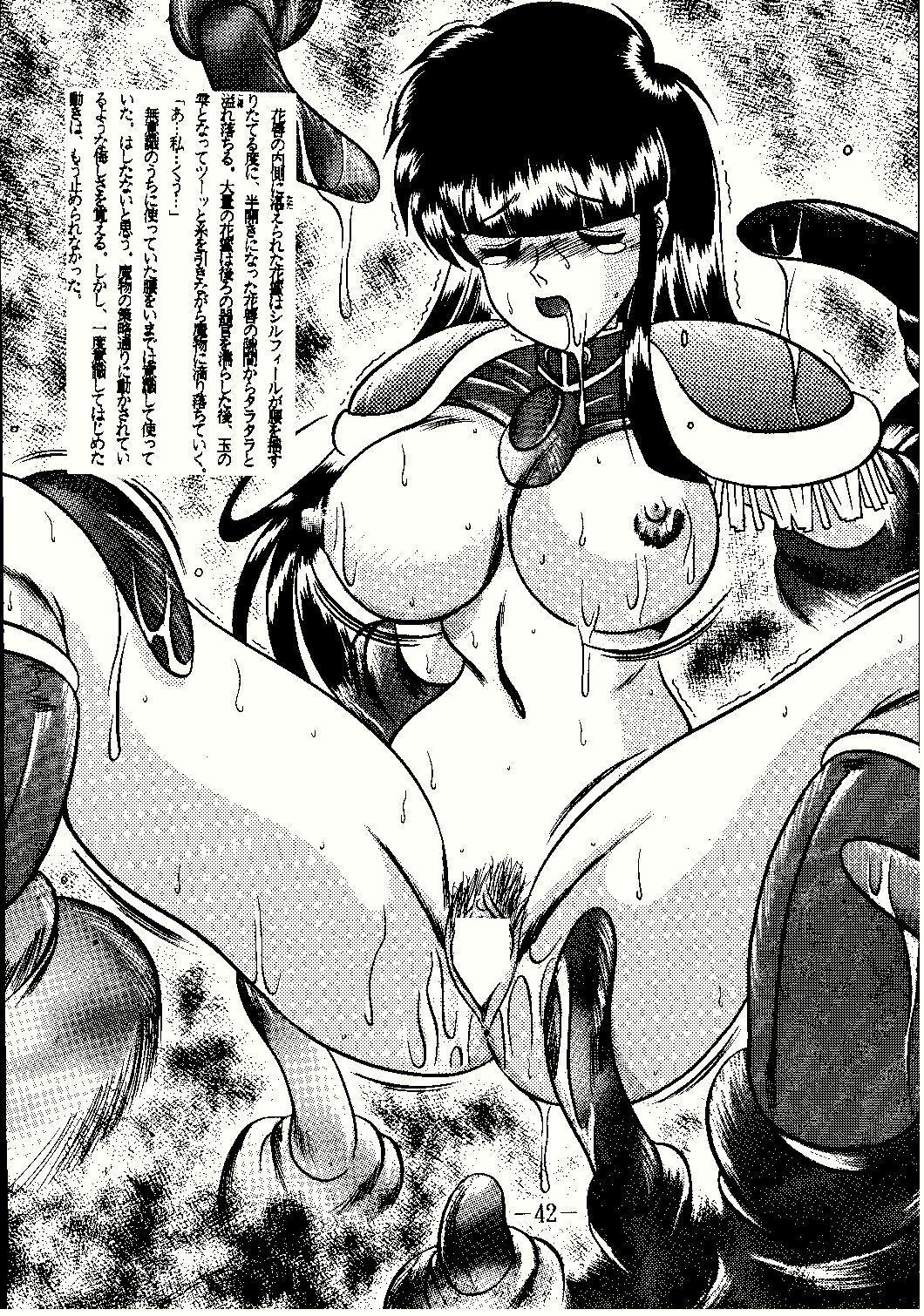 Shinseiki 41