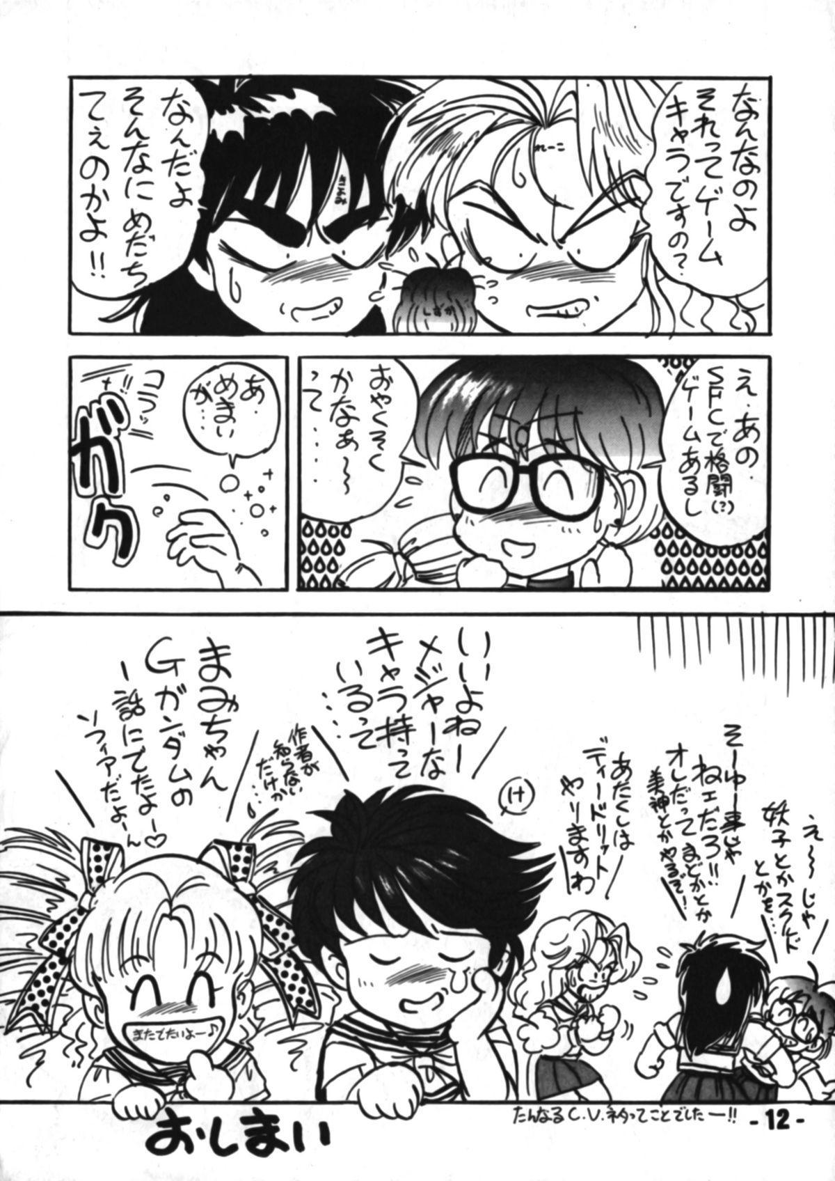 Denyuu Tougenkyou 10