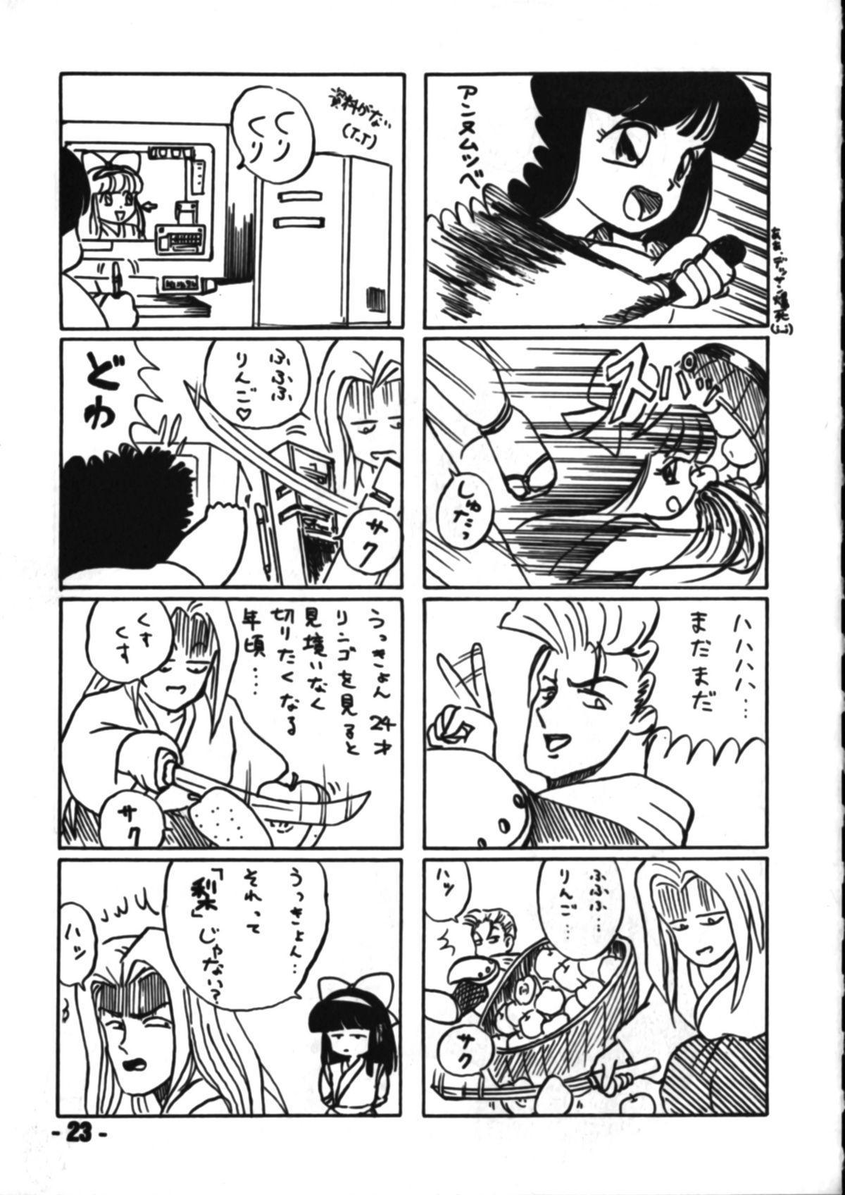Denyuu Tougenkyou 21
