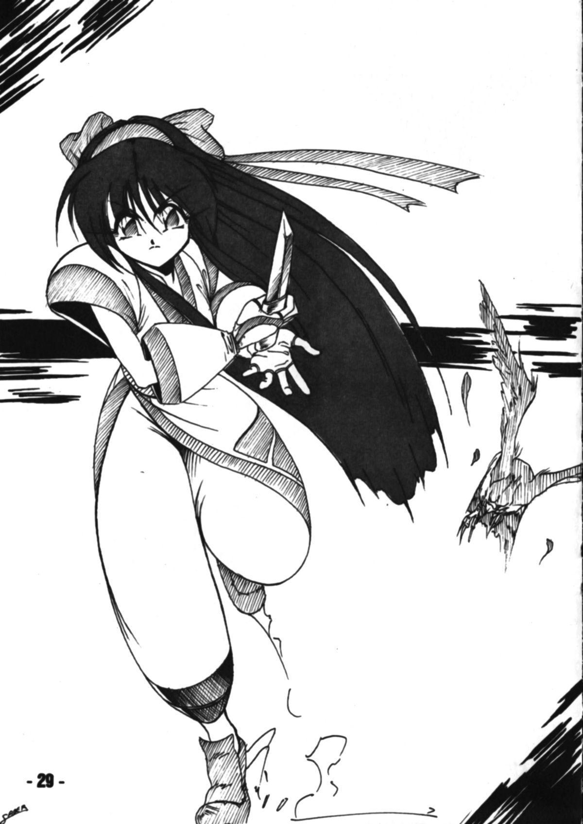 Denyuu Tougenkyou 27