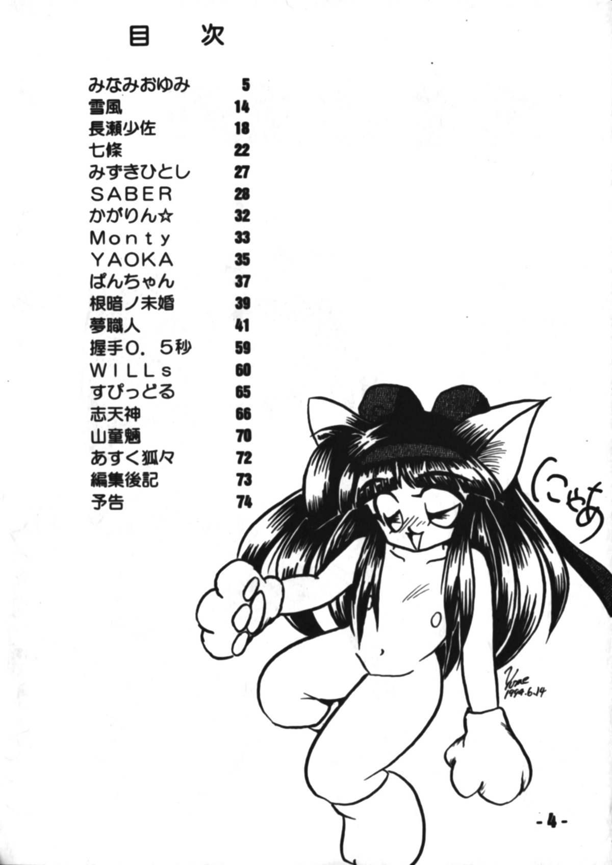 Denyuu Tougenkyou 2