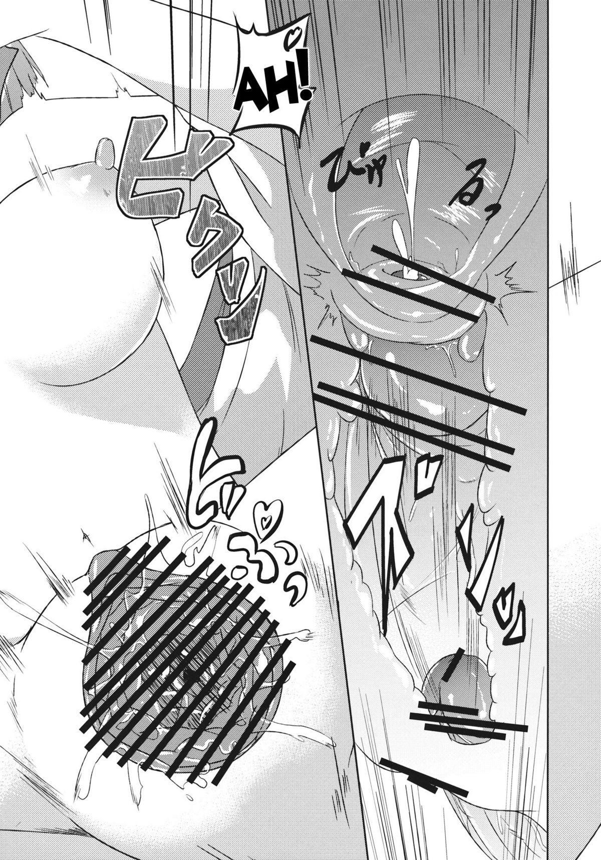 Hieda no Musume, Hatsujou su 29
