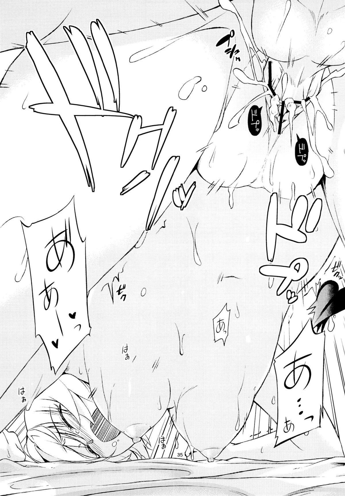 Harem Keikaku Shidou 33